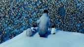 Image de « Happy Feet 2 de George Miller »