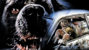 Image de « Cujo : Test du Bluray  »